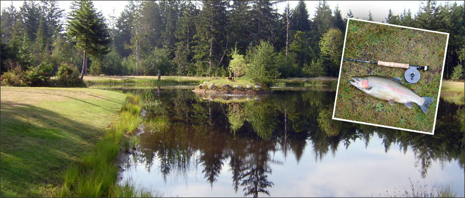 Fishing Pond Seal Bay RV Park